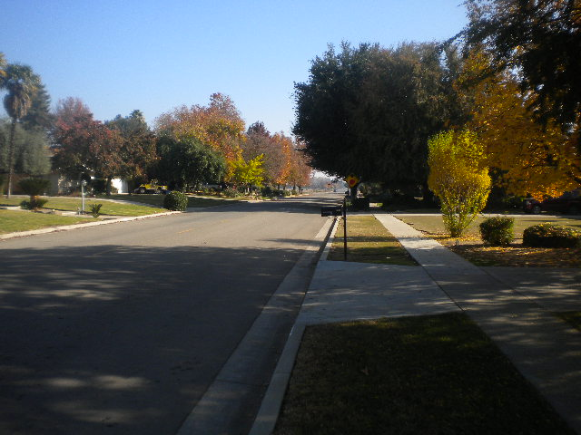 Looking East from the front of my house